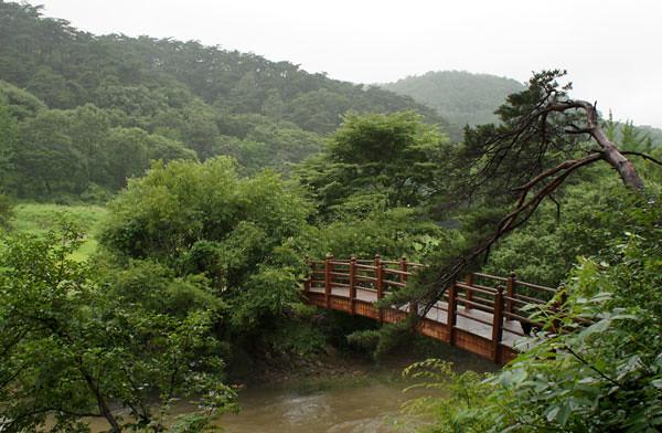 magoksa_bridge