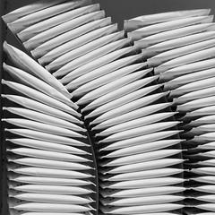 Stacks (G-daddyArt) Tags: blackandwhite stilllife abstract canon bag studio tea box minimal wrapper alienbees 50d strobist platinumheartaward