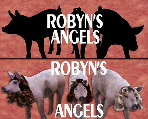 robyns angels montage