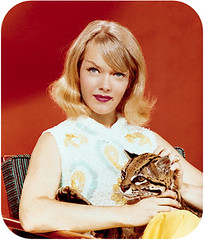 Honey West, a young white woman with blonde hair, sitting back holding an ocelot on her knee