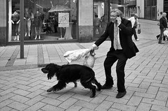 A Hunting We Shall Go (Monty May (OBSERVE)) Tags: street dogs blackwhite fuji instruction 44 x100
