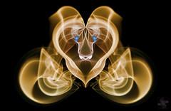 Smoking in the Theater (Psycho_Babble) Tags: abstract smoke lion explore mgm incense smokeart smokephotography smokephoto smokemanipulation creativesmoke