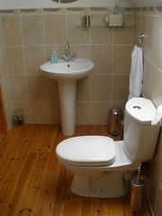 "Ensuite shower room • <a style=""font-size:0.8em;"" href=""http://www.flickr.com/photos/64982164@N04/6001585435/"" target=""_blank"">View on Flickr</a>"