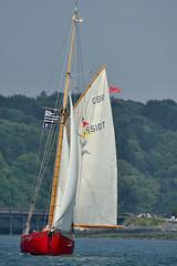 Le Chloe May (Brestitude) Tags: boats bretagne bateaux breizh sailingships morlaix finistère carantec vieuxgréements d700 chloemay brestitude entreterreetmer