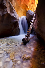 Canyon Bliss (Bill Ratcliffe) Tags: utah waterfall zion southernutah narrows slotcanyon colorphotoaward kanarraville d7000 kanarrafalls kanarracreekcanyon