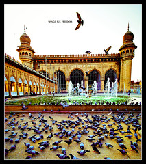 wings.fly.freedom (revisited) (PNike (Prashanth Naik)) Tags: sunset sky india building bird water architecture freedom golden flying nikon asia pigeons prayer flight hyderabad andhra masjid andhrapradesh meccah d3000 vetorama pnike stunningphotogpin