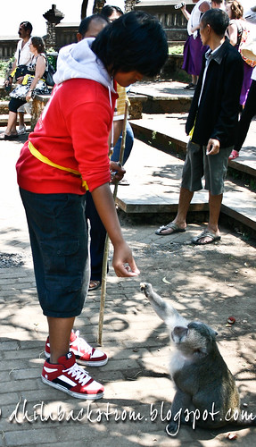 Indonesia_2011-24.jpg