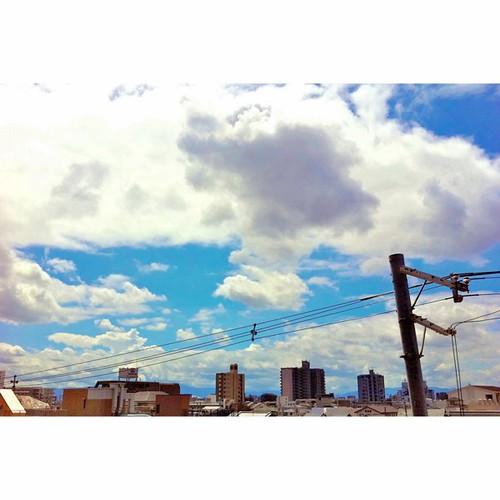 今日の写真 No.335 – 昨日Instagramへ投稿した写真(2枚)/iPhone4+Camera+
