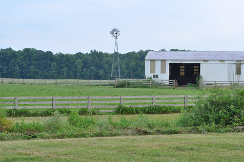 Some of Flying J Farm's pastures