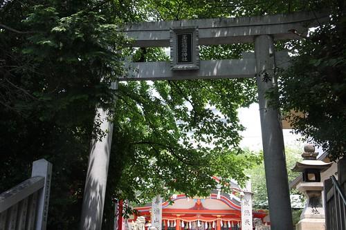 緑深い神社 / Summer Shinto shrine