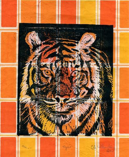 tiger430