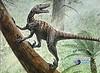 PaleoMundo - Dinosaurios que vuelan (9)