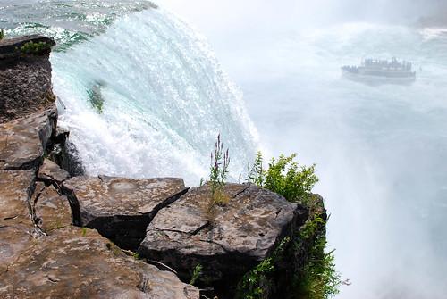 niagra falls3-0074
