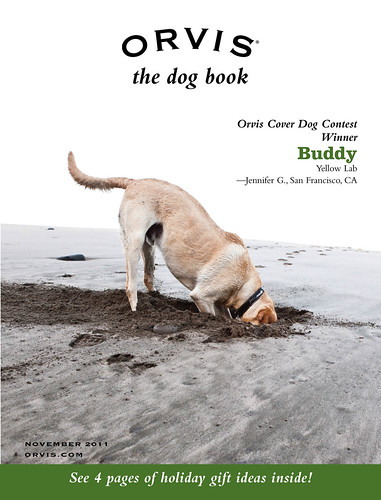 Orvis Cover Dog Photo Contest Winner 2011: Buddy