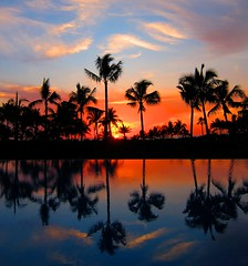 The Sun Retreats (DPGold Photos) Tags: travel sunset sun color reflection beach pool silhouette landscape mexico vallarta puertovallarta portfolio dpgoldphotos
