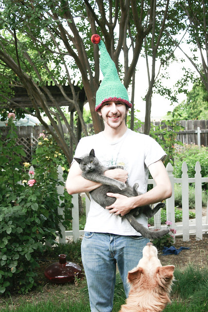 my hat, a cat, and a doggle