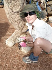 Day 6 - Photo 23: Beth and camel