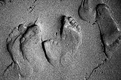 traces (gagilas) Tags: feet sand traces ne footsteps taip ne6 ne4 ne5 ne2 ne3 ne7 taip2 taip5 taip7 taip10 taip3 taip4 taip6 taip8 taip9 fotofiltroauksas