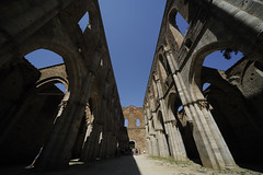 San Galgano abbey tuscany (Andrea Biagianti) Tags: sunflower siena toscana piazzadelcampo contrade d700 s1224