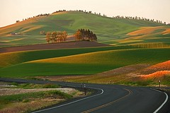 Evening Light (gordeau) Tags: road light shadow evening washington gordon thumbsup ashby palouse explored unanimous flickrchallengegroup flickrchallengewinner thechallengefactory thepinnaclehof kanchenjungachallengewinner gordeau tphofweek106 lightwriterscc