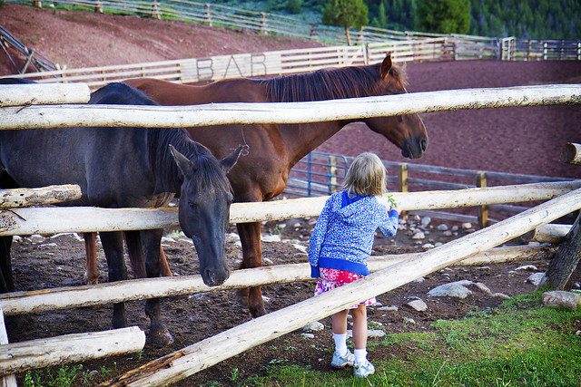Black Mountain Colorado Dude Ranch girl fence horse