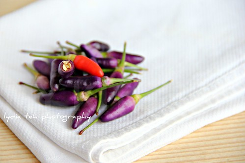 Purple Chili