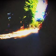 真夏の参道、人も疎ら。大仏様もちと休憩