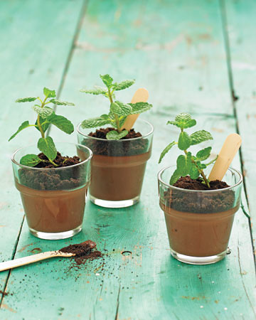 7 Martha Stewart-Potted Chocolate-Mint Puddings
