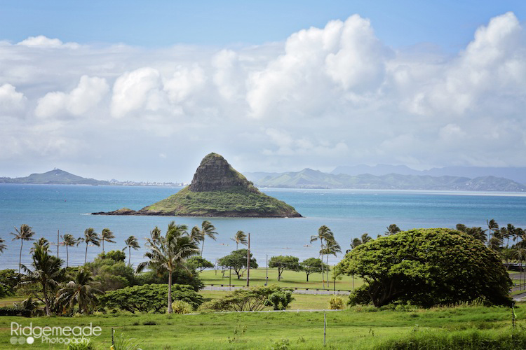 Kualoa Ranch #18