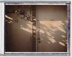 Shed Doors (jakem) Tags: leaves polaroid doors shadows saturday 75 73 supershooter chocolatefilm
