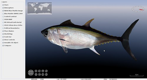 WorldWind_Tuna