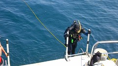First Ace I diver returns from the mission