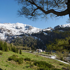 The Naturfreundehaus is a starting point for ski and hiking tours (Bn) Tags: park blue shadow wild sky sun snow mountains alps green nature water walking landscape geotagged heidi austria golden sterreich spring woods rocks afternoon eagle farmers hiking farm wildlife meadows falls adventure hut evergreen national valley goldenvalley gras rays peaks lush spar spruce larvae finest seekers birdofprey marmots hohe rauris lariks naturfreundehaus primeval unspoilt tauern hoher sonnblick kolmsaigurn hohersonnblick hocharn goldberggruppe rauristal bartgeier lpine beardedvulture schareck naturfreundeweg bucheben 3106m dastaldergeier thekingsoftheair highsonnblick kolmsaigum geo:lon=12984011 geo:lat=47067816 1598m