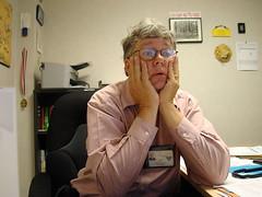 interim interim director