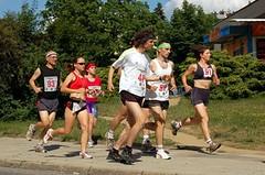 Nedělní Půlmaraton Moravským krasem oslovil půltisíc běžců