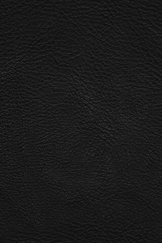 iphone_leather