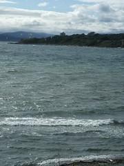Victoria kite surfers
