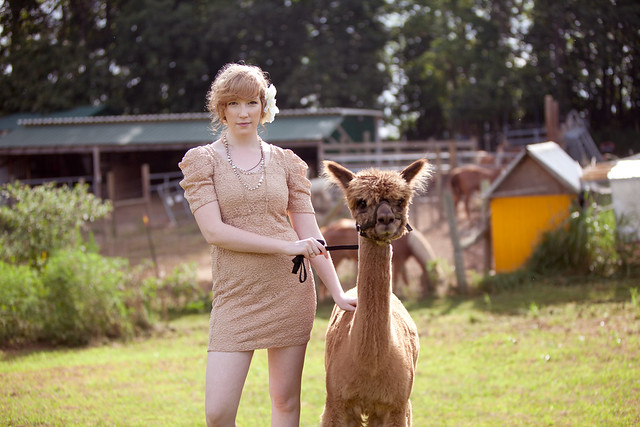 Kristen-alpacas-236-2-Edit