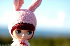 Blythe*Honey Bunny
