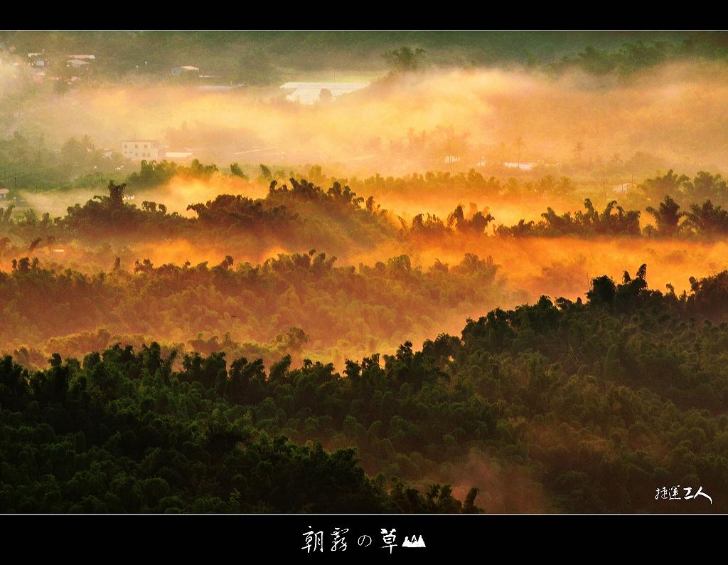++ 朝霧の草山 ++