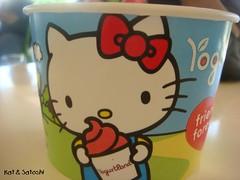 yogurtland (1)