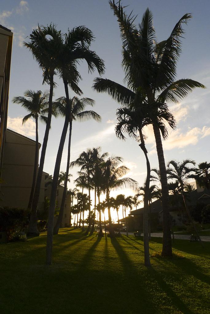 Hawaii110