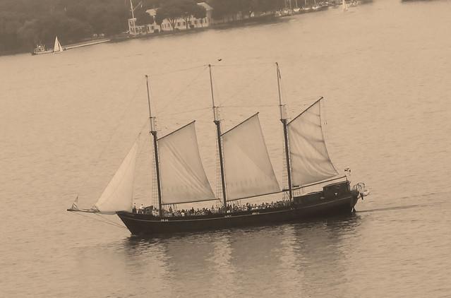sepia sails