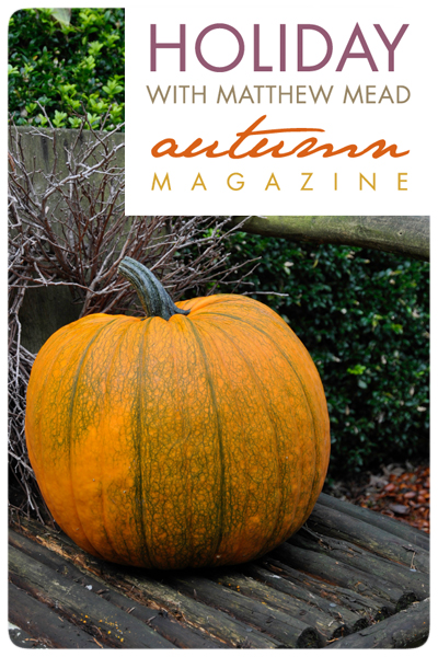 Pumpkin-Seat-MM-Autumn