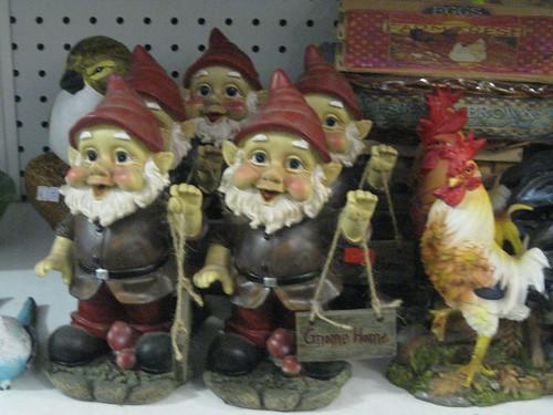gnome_4