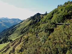 Lawinenschutz (fotoculus) Tags: sterreich berge wandern bergwandern vorarlberg bregenzerwald groseswalsertal
