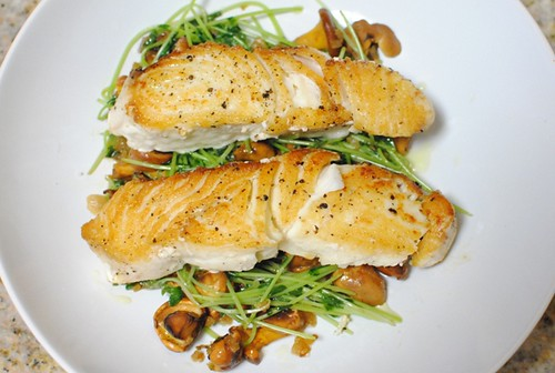 6193176933 3e5df35b08 Pan Roasted Halibut, Chanterelles with Pea Shoots