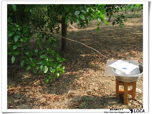 記憶的寶藏-2011關渡國際自然裝置藝術季IMG_8232.jpg