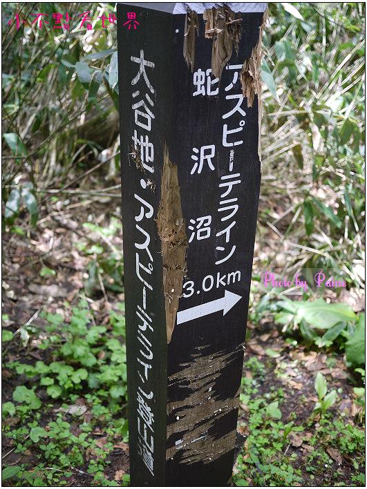 八幡平健行-37.jpg