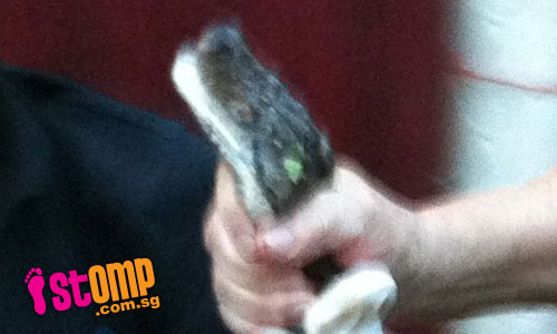 Heroic uncle catches snake with his bare hands at Jurong